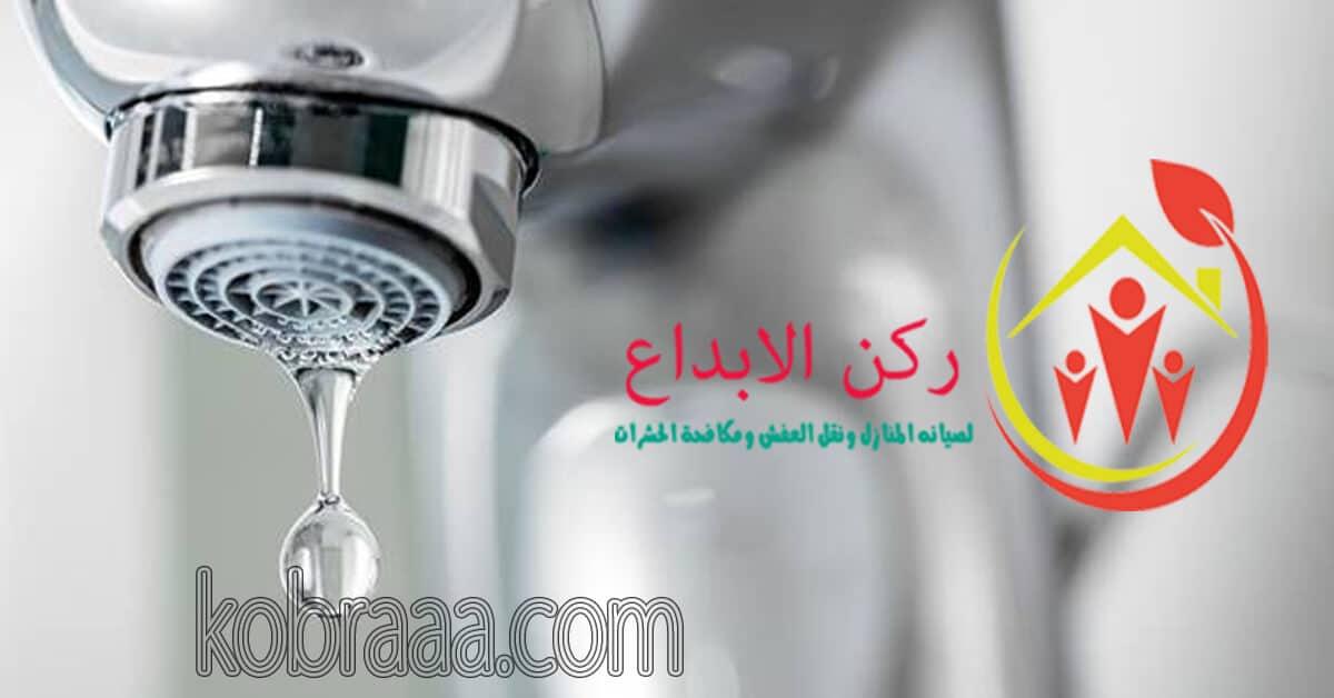 شركة كشف تسربات المياه بالباحة