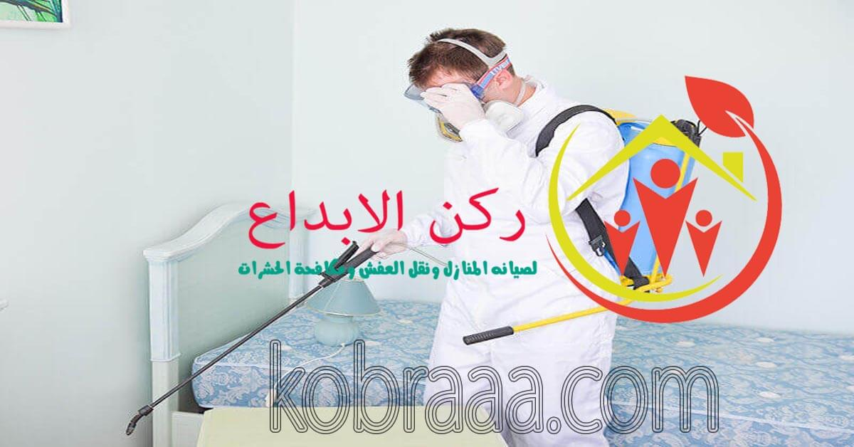 شركة رش مبيدات بسيهات وعنك