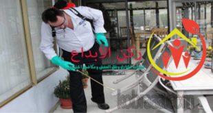 شركة رش مبيدات بالباحه
