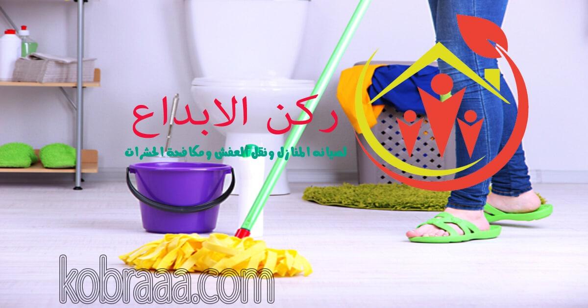 شركة تنظيف بيوت بالباحه