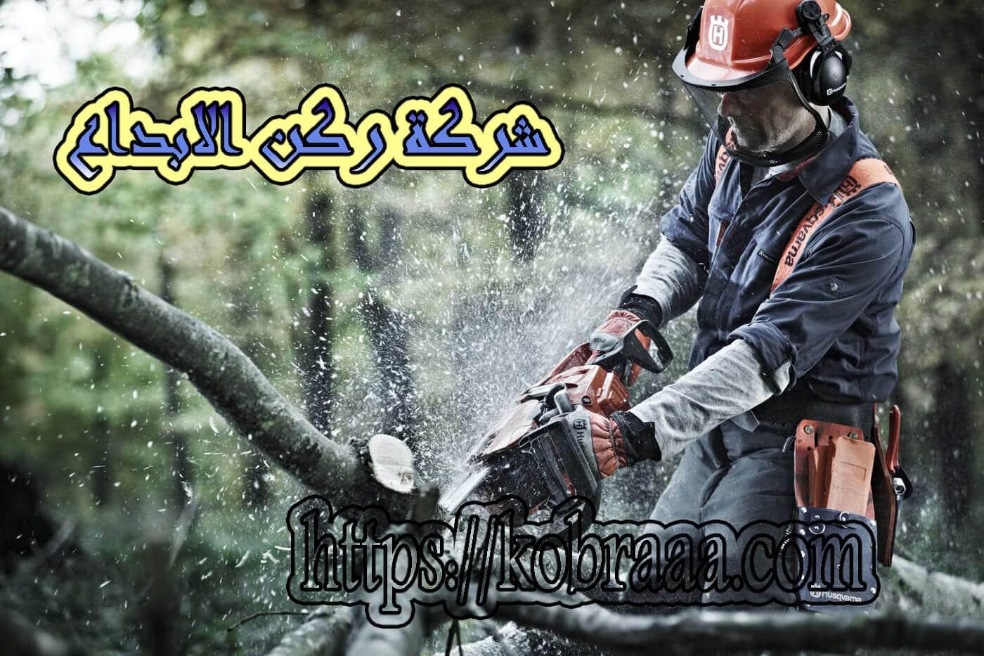 شركة ازالة اشجار بالرياض