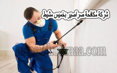 شركة مكافحة صراصير بخميس مشيط