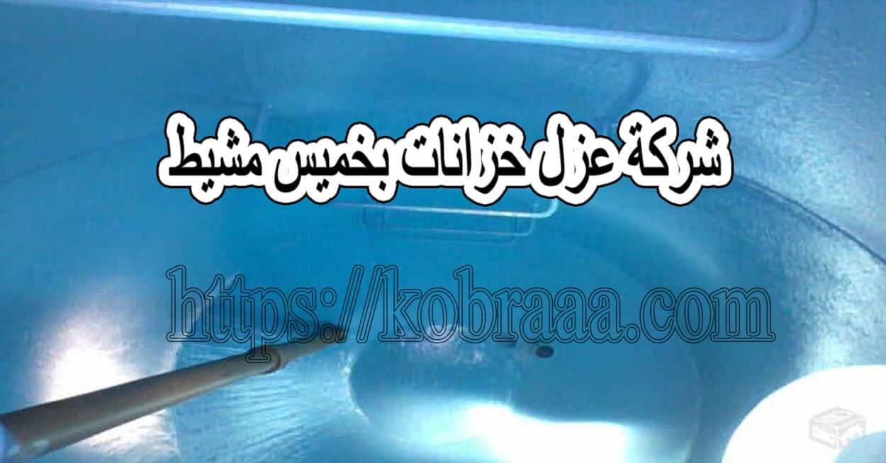 شركة عزل خزانات بخميس مشيط