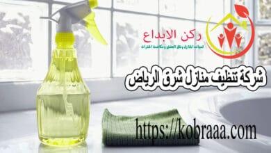 ارخص شركة تنظيف منازل شرق الرياض